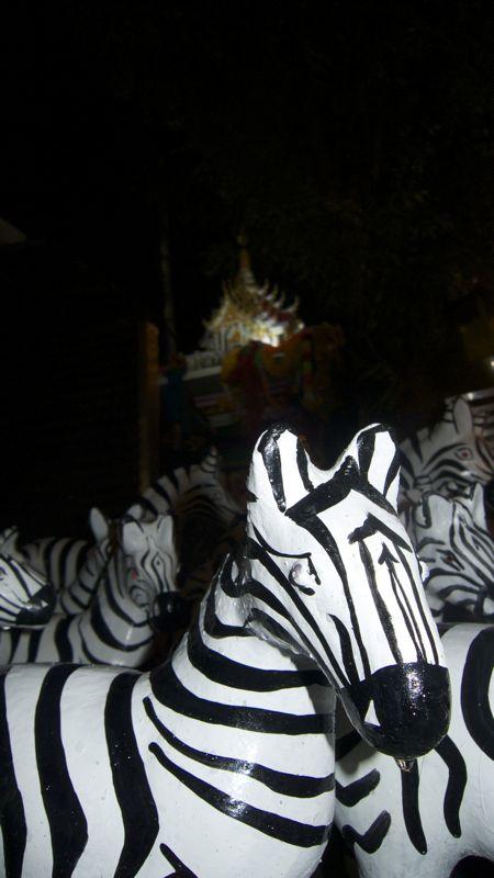 Zebra guard
