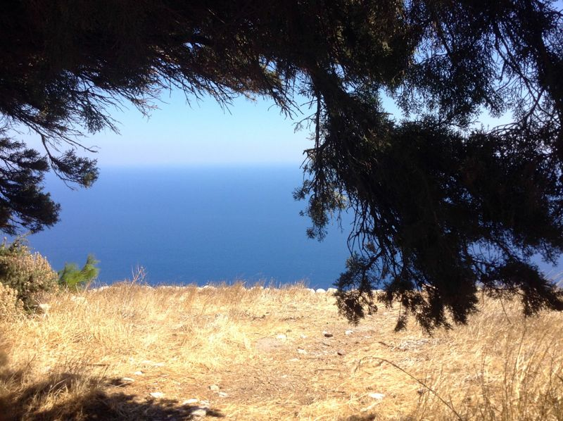 High above the Aegean, in the shade of Camphor - my equal favourite bench :