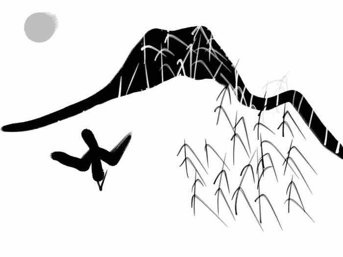 lyr11 wrekin